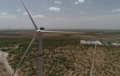 Inicia Operaciones en Tamaulipas el Parque Eólico Más Grande de México y Latinoamérica