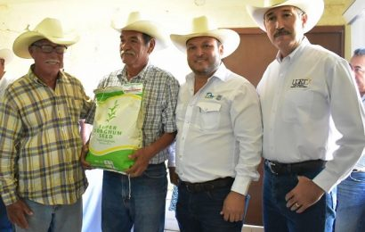 Agricultores de seis Distritos de Desarrollo Rural recibieron 11.7 ton de semilla de súper sorgo