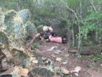 Cae Avioneta en San Fernando Hay Al Menos 2 Fallecidos
