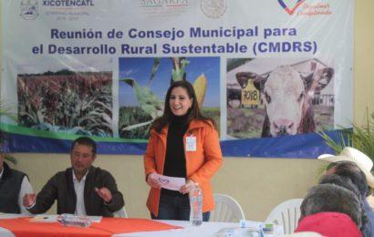El Campo, Prioridad para Mí Gobierno; Noemy González
