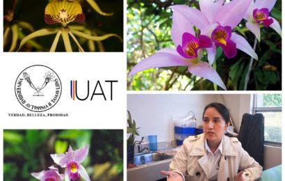 Hace UAT estudios para la conservación de orquídeas en Biosfera El Cielo