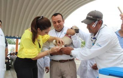 Inicia Campaña de Vacunación Antirrábica Canina y Felina en Xicoténcatl
