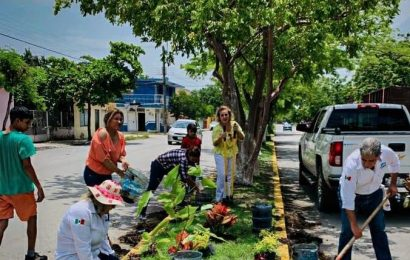 Síndicos y Regidores No Aflojan Paso a Embellecer Bulevares de la Ciudad
