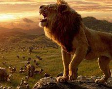 Jon Favreu muestra la única imagen real en «El Rey León»