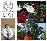 Estudian Potencial de Plantas Para Retener Contaminantes